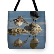 Wildons Phalaropes Tote Bag