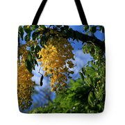 Wilhelmina Tenney Rainbow Shower Tree Makawao Maui Flowering Trees Of Hawaii Tote Bag