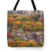 Willard Cliffs Tote Bag