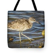Willet Feeding In The Marsh 1 Tote Bag