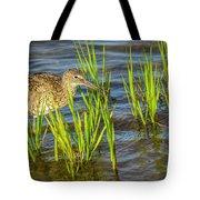 Willet Feeding In The Marsh 2 Tote Bag