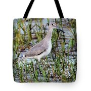 Willet On Beach Tote Bag