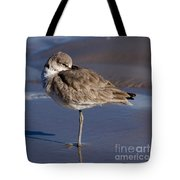 Willet Resting At The Beach Tote Bag