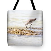 Willet Set 2 Of 4 By Darrell Hutto Tote Bag