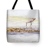 Willet Set 3 Of 4 By Darrell Hutto Tote Bag