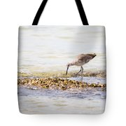 Willet Set 4 Of 4 By Darrell Hutto Tote Bag