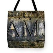 Williams 1921 Tote Bag