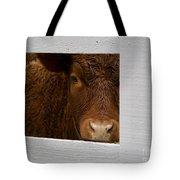 Williamsburg Calf Tote Bag