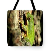Willing Subject Tote Bag