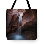 Willis Creek Fall Tote Bag