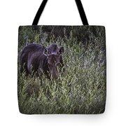Willow Delite Tote Bag