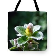 Willow Flower Tote Bag