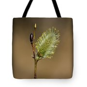 Willow Spring Tote Bag