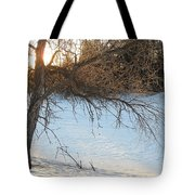 Willow Tree At Sunrise Tote Bag
