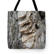 Willow Tree Bark Up Close Tote Bag