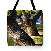 Willow Trees Tote Bag