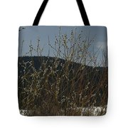 Willows In Snow Tote Bag