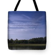 Wilmington River Savannah Morning Tote Bag