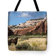 Wilson Arch Tote Bag