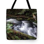 Wilson Creek #18 With Added Cedar Waxwing Tote Bag
