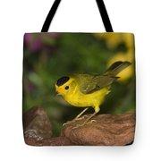 Wilsons Warbler Wilsonia Pusilla Male Tote Bag