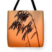 Wilting Sunset Tote Bag