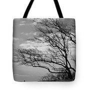 Wind Blown Tote Bag by Catherine Reusch Daley