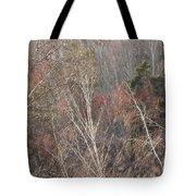 Wind Tote Bag