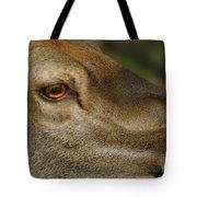 Wind Over Red Deer Tote Bag