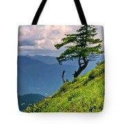 Wind Sculpted Conifer Tote Bag