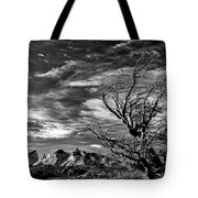 Wind Shaped Tree #2 - Patagonia Tote Bag