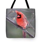 Windblown Cardinal Tote Bag