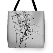 Windblown In The Snow Tote Bag