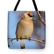 Windblown Waxwing Tote Bag