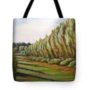 Windbreak Evening Tote Bag