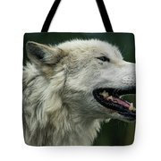 Winded Tote Bag