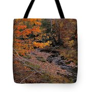 Winding Brook Tote Bag