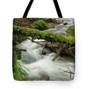 Winding Creek With A Mossy Log Tote Bag