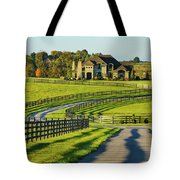 Winding Entrance Tote Bag