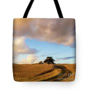 Winding Road Leads To A Lone Tree Tote Bag