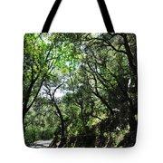 Winding Road Santa Ynez Mountains Tote Bag