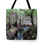 Winding Sopchoppy River Tote Bag