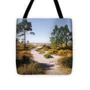 Windmark Beach Florida Tote Bag