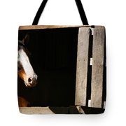 Window Tote Bag