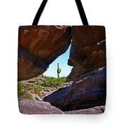 Window Cactus Tote Bag