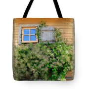 Window Floral In Plymouth Tote Bag