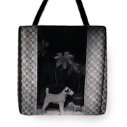 Window Scene Tote Bag