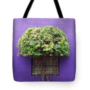 Window Treatment Tote Bag