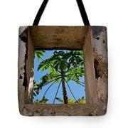 Window Tree Tote Bag