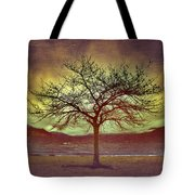 Windstorm At Skaha Lake Tote Bag